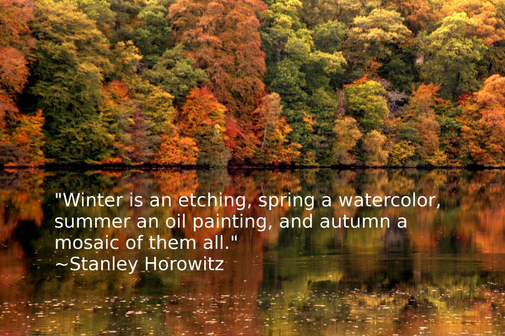 1000+ images about Autumn Quotes on Pinterest